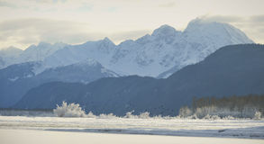 Chilkat River. Royalty Free Stock Photography