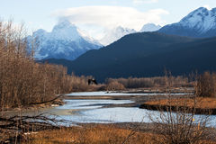 Chilkat River eagle preserve in fall Royalty Free Stock Image