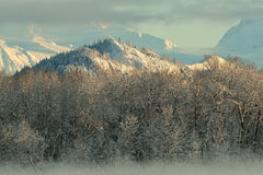 The Chilkat Valley under a covering of snow Stock Image