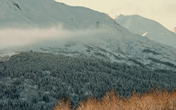 The Chilkat Valley under a covering of snow Royalty Free Stock Photo