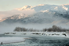 The Chilkat Valley under a covering of snow Royalty Free Stock Photography