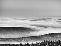 Chill inverse weather in winter mountains, heavy mist. Valley full of fog. Peaks of mountains above creamy mist stock photography
