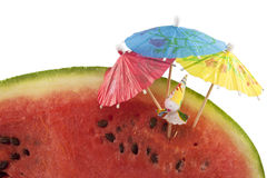 Chill out. Piece of watermelon with a figurine Stock Images
