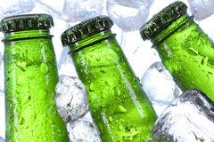 Chilled beer. Perfectly chilled beer just on your table stock photos