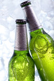 Chilled beer in ice! Stock Photos