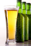Chilled beer on white!. Cold chilled green beer in bottles on white background royalty free stock image