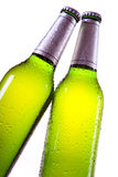 Chilled beer on white background Stock Image