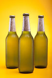Chilled bottled beer Royalty Free Stock Image