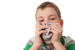 Chilled boy wipes scarf nose isolated on white Stock Photos