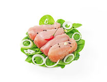 Chilled chicken breast put in a row. On white background Stock Image