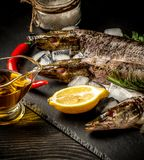 Chilled fish pike on a plate with ice and lemon. Food background. Top view with copy space royalty free stock photos