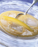 Chilled mango and melon soup Royalty Free Stock Images