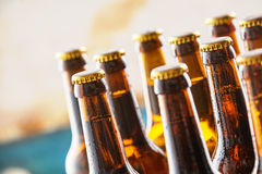 Chilled refreshing beers in a bar or pub. Chilled refreshing beers standing on a counter in a bar or pub with closeup focus to the necks and unopened tops and royalty free stock photos