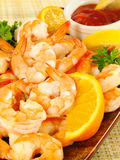 Chilled Shrimp Cocktail Stock Images