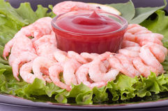 Chilled shrimp served Stock Images