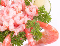 Chilled shrimp served Royalty Free Stock Images