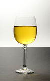 Chilled white wine. Glass of chilled white wine on bi-colored background Stock Image
