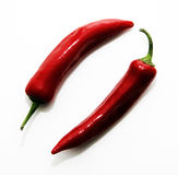 Chilli. Two red chilli peppers on white background Royalty Free Stock Image