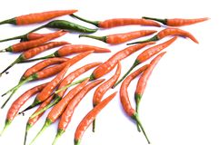 Chilli Stock Photography