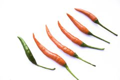 Chilli Stock Images