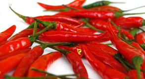 Chilli. Thai pepper variety of chilli pepper. red fruits, isolated on white Stock Photos