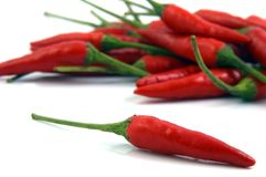 Chilli. One Chilli in front of a pile of Chilli Royalty Free Stock Photography