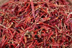 Chilli background Stock Photography