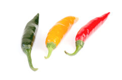 Chilli (Capsicum frutescens L.) Royalty Free Stock Photography