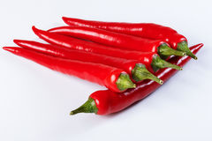 Chilli Royalty Free Stock Images