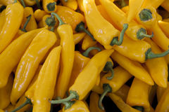 Chilli closeup, yellow pods on the counter market. Chile pepper, Cayenne pepper, Pungent bouquet of pepper, Chinese pepper. Great. Photo for the sellers of royalty free stock photo