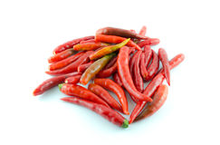 Chilli Royalty Free Stock Photos
