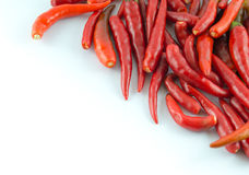 Chilli. Component cook food hot Stock Image