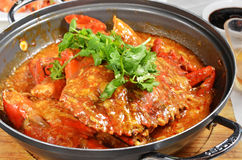 Chilli Crab. Close up of delicious chili crab stock photo