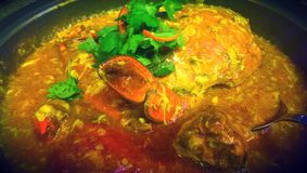 Chilli crab Royalty Free Stock Photography