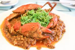 Chilli crab or Singapore food. Singaporean Chili Crab Recipe stock images