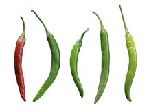 Chilli die cut isolate royalty free stock images