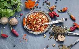Chilli Flakes, Pepper,Nutmeg,Paprika,Cumin and Coriander Spices Stock Photography