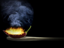 Chilli in flames Stock Photography