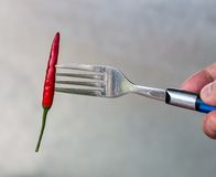 Chilli On Fork Represents Chili Pepper And Cayenne Stock Photos