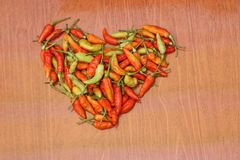 Chilli is the fruit of plants from the genus Capsicum, version 3. Chilli is the fruit of plants from the genus Capsicum, members of the nightshade family royalty free stock photos