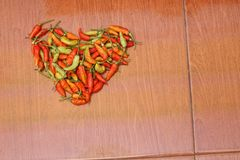 Chilli is the fruit of plants from the genus Capsicum, version 7. Chilli is the fruit of plants from the genus Capsicum, members of the nightshade family royalty free stock photos