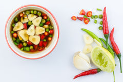 Chilli and garlic in fish souce  Stock Photos