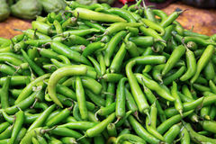 Chilli green peppers Royalty Free Stock Image