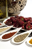 Chilli and Ground Spices Royalty Free Stock Photography