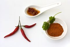 Chilli ingredients Royalty Free Stock Image