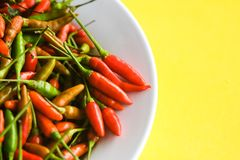 Chilli on isolated background royalty free stock photo