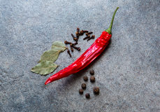 Chilli papper with bay leaves, allspice, cloves on the gray bac. Kground Royalty Free Stock Image