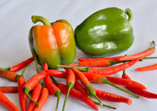 Chilli papper thai Stock Photos