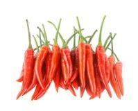 Chilli peper isolated on white background Stock Image