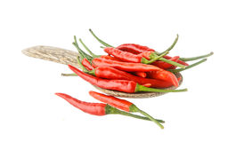 Chilli peper isolated on white background Royalty Free Stock Photo